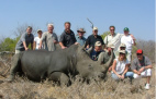 White rhino ear notching and microchip insertion